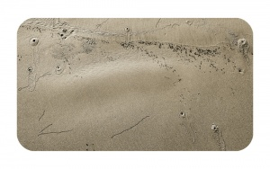 Surface Impressions 2